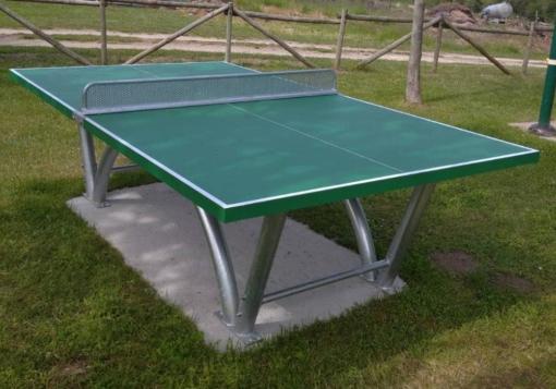 ping pong public sport pro ayto leon 1
